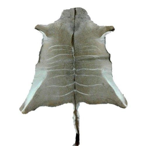 Tapis en peau naturelle de koudou africain 165x130 cm Zerimar - 1