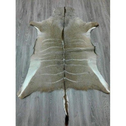 Tapis en peau naturelle de koudou africain 165x130 cm Zerimar - 2