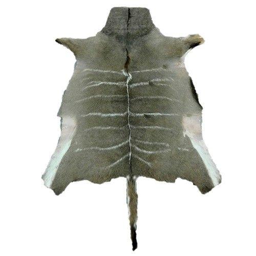 Tapis en peau naturelle de koudou africain 160x115 cm Zerimar - 1