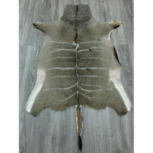 Tapis en peau naturelle de koudou africain 160x115 cm Zerimar - 2